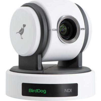 BirdDog Eyes P100